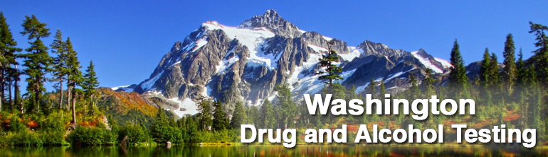 Washington Drug and Alcohol Testing1 centers