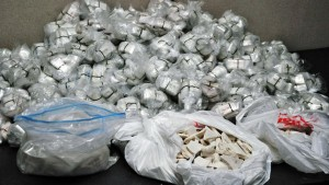 Molly Drug Ring Brought Down in Miami